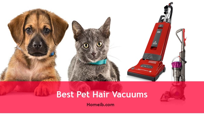 Best Pet Hair Vacuums